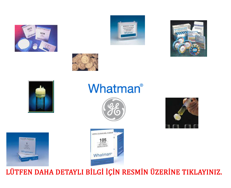 WHATMAN